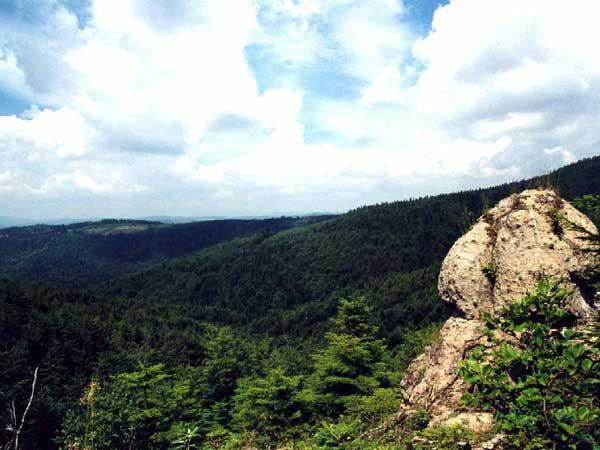 Obrázok Príroda Kremnické vrchy
