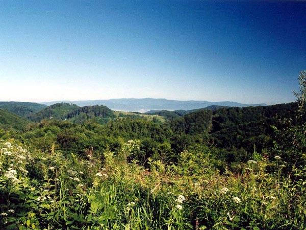 Obrázok Príroda Vtáčnik